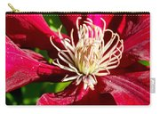 Deep Red Clematis Carry-all Pouch