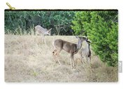 Deer24 Carry-all Pouch