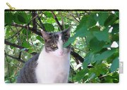 Demure Kitty Carry-all Pouch