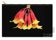 Dendrobium Lawesii Carry-all Pouch