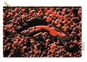 Denver Broncos 4b Carry-all Pouch