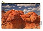 Desert Brain Rocks Carry-all Pouch