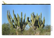 Desert Cacti In Cabo Pulmo Mexico Carry-all Pouch