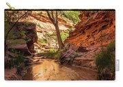 Desert Canyon Paradise - Coyote Gulch - Utah Carry-all Pouch