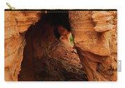 Desert Cavern Carry-all Pouch