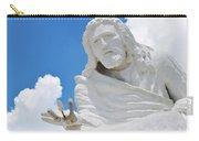Desert Christ Park Carry-all Pouch