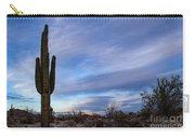 Desert Evening Carry-all Pouch