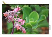 Desert House Blooming Succulent Carry-all Pouch