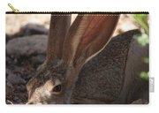 Desert Jackrabbit Carry-all Pouch