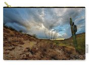 Desert Landscape With Clouds Carry-all Pouch