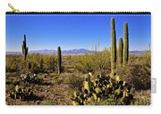 Desert Spring Carry-all Pouch by Chad Dutson