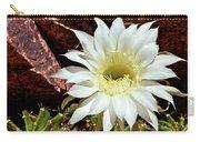 Desert Star Carry-all Pouch
