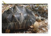 Desert Turtle With An Unusual Shell In The Wild Carry-all Pouch