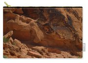 Desert Varnish Petroglyphs Valley Of Fire Carry-all Pouch