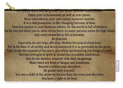 Desiderata Vintage Carry-all Pouch