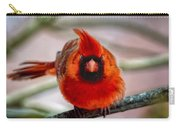 Determined Cardinal  Carry-all Pouch