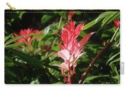 Devils Blush - Australian Native In Blue Mountains Carry-all Pouch