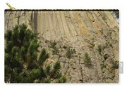 Devils Tower 8 Carry-all Pouch