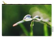 Dew Drop On Spring Grass Carry-all Pouch