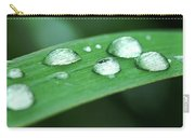 Dew Drops On A Blade Of Grass Carry-all Pouch