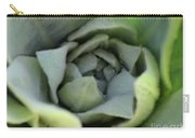 Dew On Common Mullein Carry-all Pouch