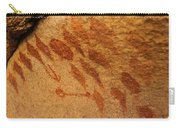 Diamond Pictographs Carry-all Pouch