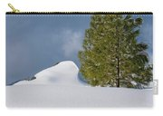 Diamonds In The Snow Carry-all Pouch