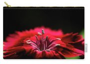 Dianthus In Desperation Carry-all Pouch