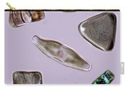 Diatoms Carry-all Pouch