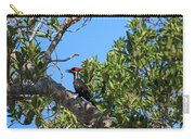 Ding Darling - Pileated Woodpecker Resting Carry-all Pouch