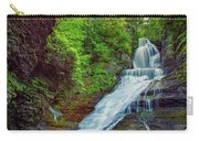 Dingmans Falls Carry-all Pouch
