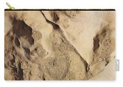 Dino Tracks In The Desert 2 Carry-all Pouch