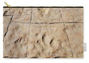 Dino Tracks In The Desert 4 Carry-all Pouch