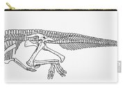 Dinosaur: Corythosaurus Carry-all Pouch