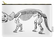 Dinosaur: Triceratops Carry-all Pouch