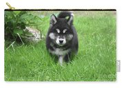 Dinstinctive Black And White Markings On An Alusky Pup Carry-all Pouch