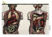 Dissected Torsos And Brains Carry-all Pouch