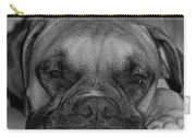 Disturbing His Nap Carry-all Pouch by DigiArt Diaries by Vicky B Fuller