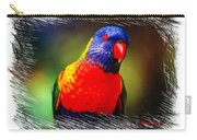 Do-00153 Colourful Lorikeet Carry-all Pouch