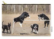 Dog 380 Carry-all Pouch