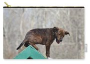 Dog 388 Carry-all Pouch