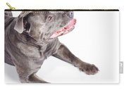 Dog Looking Up To Pet Copyspace Carry-all Pouch