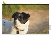 Dog On Sun Carry-all Pouch