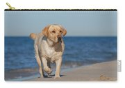 Dog On The Beach Carry-all Pouch