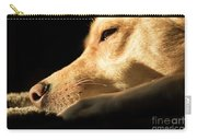 Doggy Dreams Carry-all Pouch