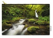 Dolgoch Falls Carry-all Pouch