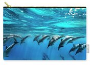 Dolphin Dive Carry-all Pouch by Sean Davey