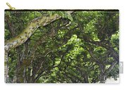Dome Of Trees Carry-all Pouch