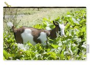 Domestic Pygmy Goat  Carry-all Pouch
