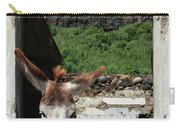 Donkey At The Window Carry-all Pouch